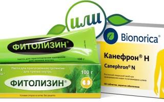 Фитолизин или Канефрон: что лучше от цистита