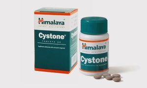 Таблетки от цистита Цистон: как принимать