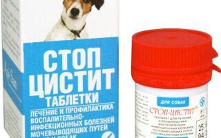 Таблетки Стоп-цистит для собак: инструкция по применению