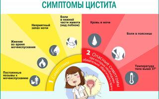 Цистит у женщин: симптомы и лечение препаратами