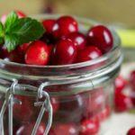 Клюква от цистита – как пить, рецепт, морс, отвар, препараты