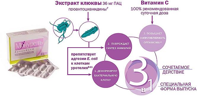 Монурель Превицист - инструкция по применению при цистите