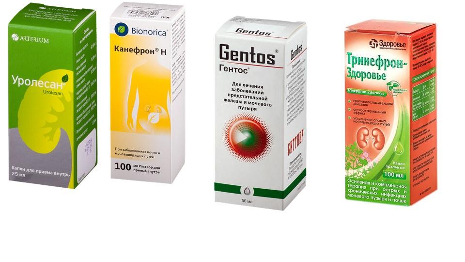 Растительные препараты при лечении мочевого пузыря